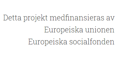 EU Socialfond Europa ESF medfinansieras
